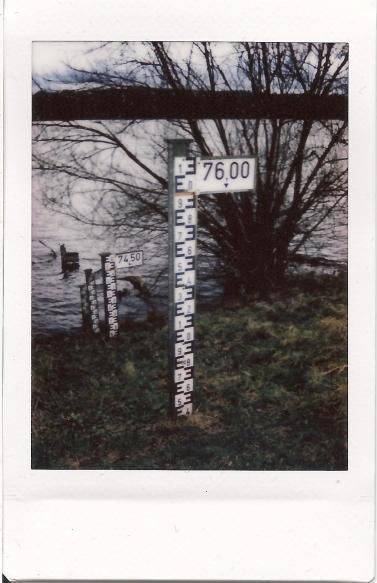 008-1